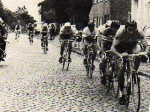 Merckx Alsemberg