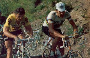 Merckx Thevenet